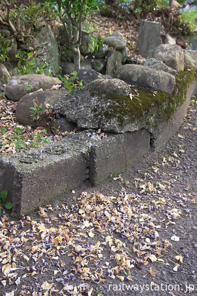 南海高野線・紀伊清水駅の池庭跡、散り落ちた藤の花びら