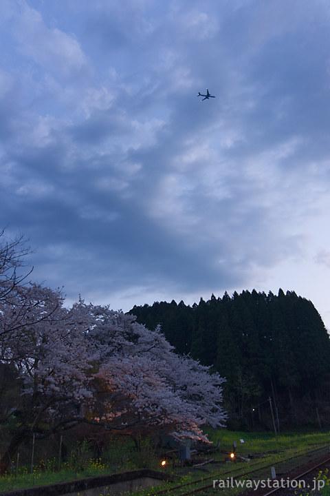 小湊鉄道、夜の帳が下りる月崎駅、桜と上空の飛行機