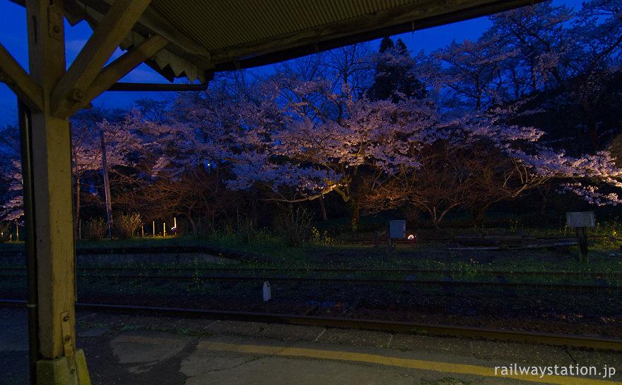 夜桜美しい小湊鉄道の月崎駅